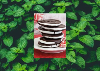 Experience Authentic Peppermint this Holiday Season from the Seely Peppermint Family Farm