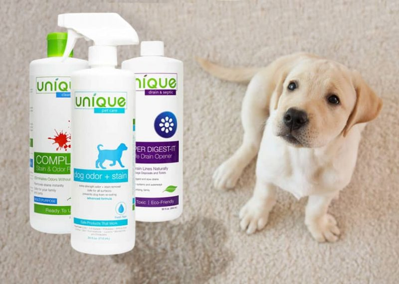 Effective, Non-Toxic Cleaning Products